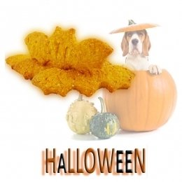 Dog biscuits HALLOWEEN