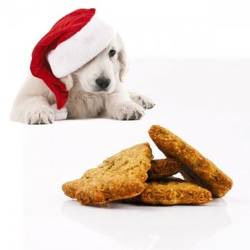 Cookies for dogs CHRISTMAS